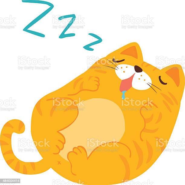 Fluffy sleeping sweet dream cat vector vector id484004414?b=1&k=6&m=484004414&s=612x612&h=6pi7fgbgu6sxx wepmgp8raciyap8dfjrrisyi8wus0=