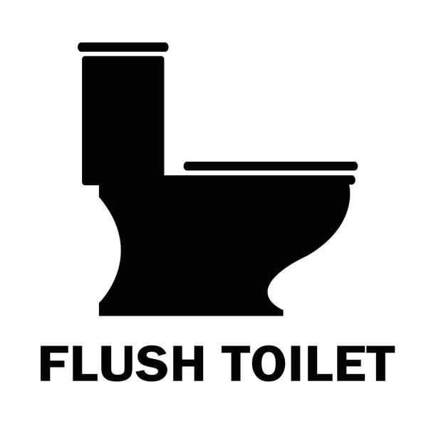 Best Flushing Toilet Illustrations, Royalty-Free Vector