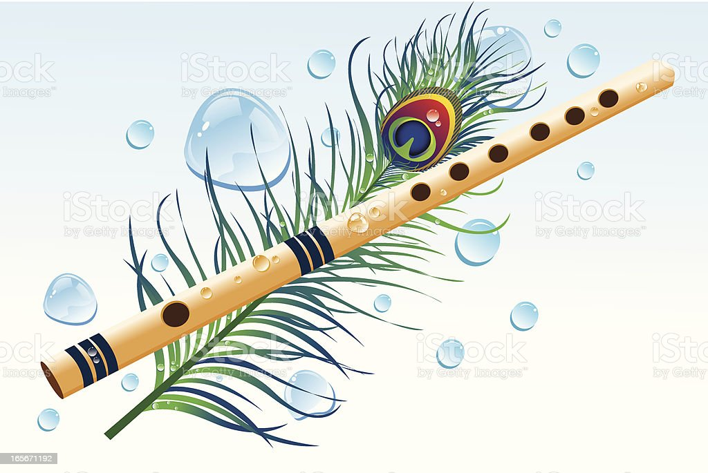 flute and peacock feather with water drops stock vector art more