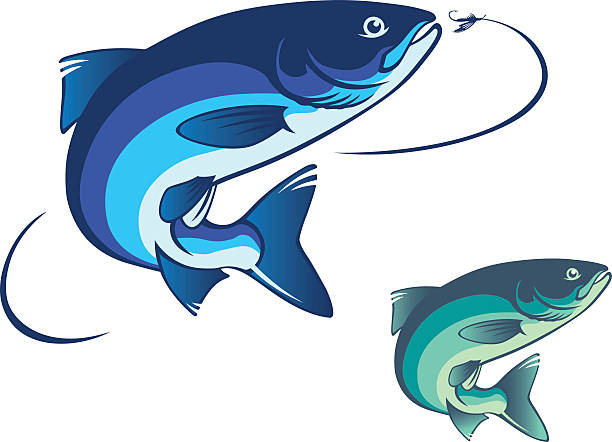 fly fishing salmon - redfish stock illustrations, clip art, cartoons, & icons