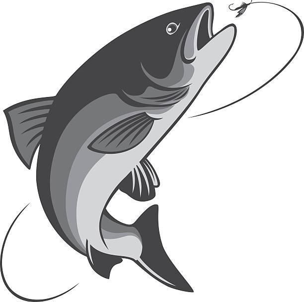 illustrazioni stock, clip art, cartoni animati e icone di tendenza di pesca con la mosca - trout