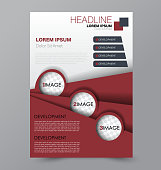 Business brochure template. Flyer design. Annual report cover. Booklet for education, advertisement, presentation, magazine page. a4 size vector illustration. Red color.