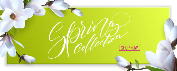 flyer design with magnolia flowers, advertising fashion banner. web banner for on line shop. lettering spring collection - spring fashion stock illustrations, clip art, cartoons, & icons
