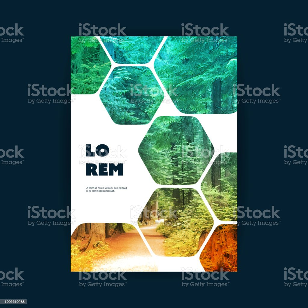 Flyer or Cover Design - Woodland royalty-free flyer or cover design woodland stock illustration - download image now