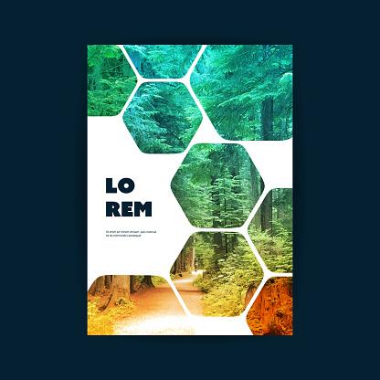 Flyer or Cover Design - Woodland