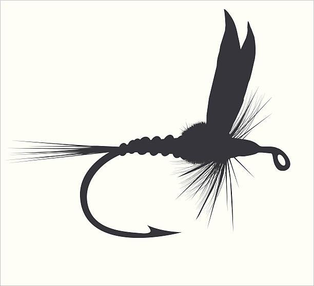 illustrazioni stock, clip art, cartoni animati e icone di tendenza di pesca a mosca - trout