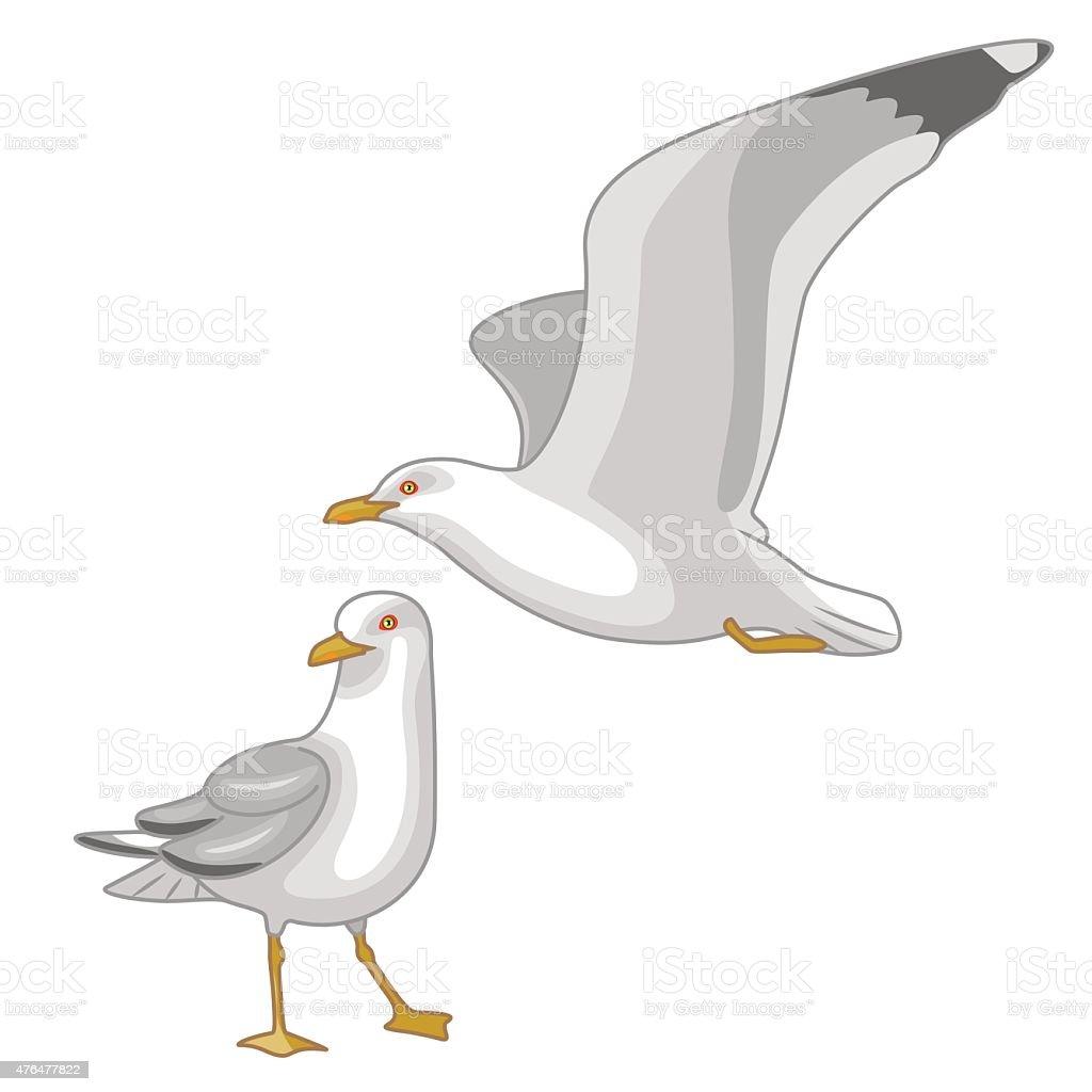 Flying and Walking Seagulls vector art illustration