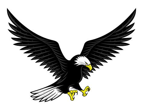 Flying bald eagle icon.