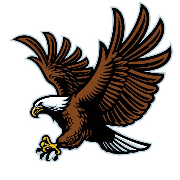 illustrations, cliparts, dessins animés et icônes de vol d'aigle chauve mascotte - aigle
