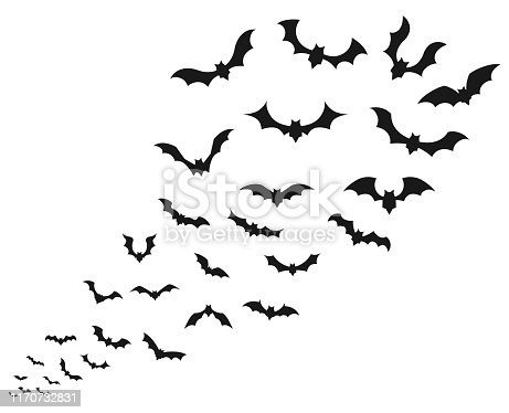 Flying bat  icon set