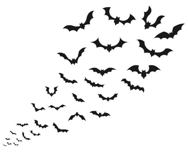 Flying bat  icon set Flying bat  icon set bat stock illustrations
