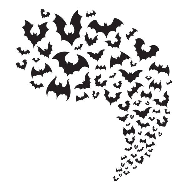 flying bats flock. creepy halloween bat fly from cave. scary nocturnal animal at sky horizontal divider vector illustration - bat stock illustrations, clip art, cartoons, & icons