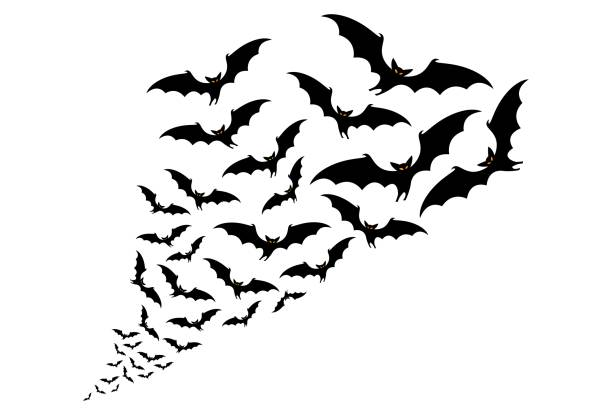 flying bats silhouettes. flock of bats flying bats silhouettes. flock of bats - Halloween vector illustration swarm of insects stock illustrations