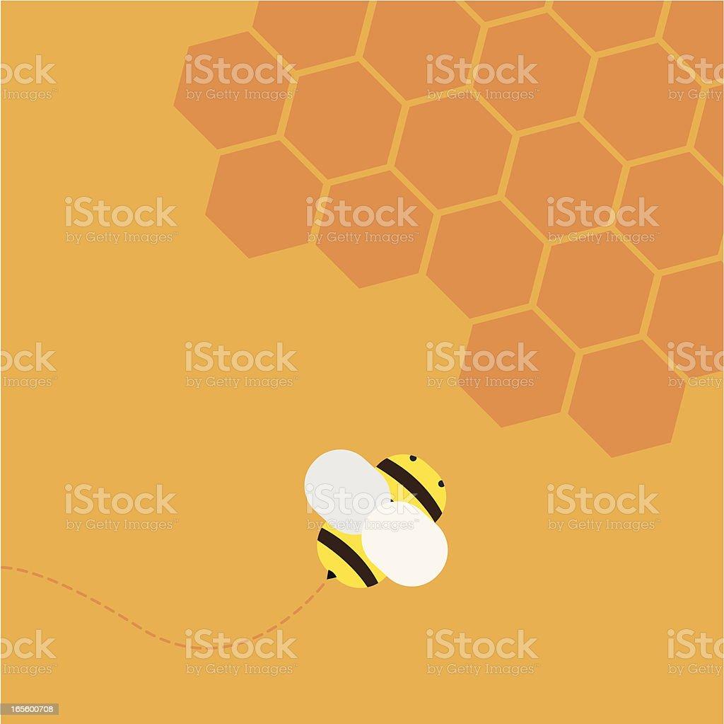 Flying bee vector art illustration