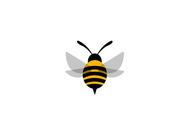 ilustrações de stock, clip art, desenhos animados e ícones de flying bee worker logo - inseto himenóptero