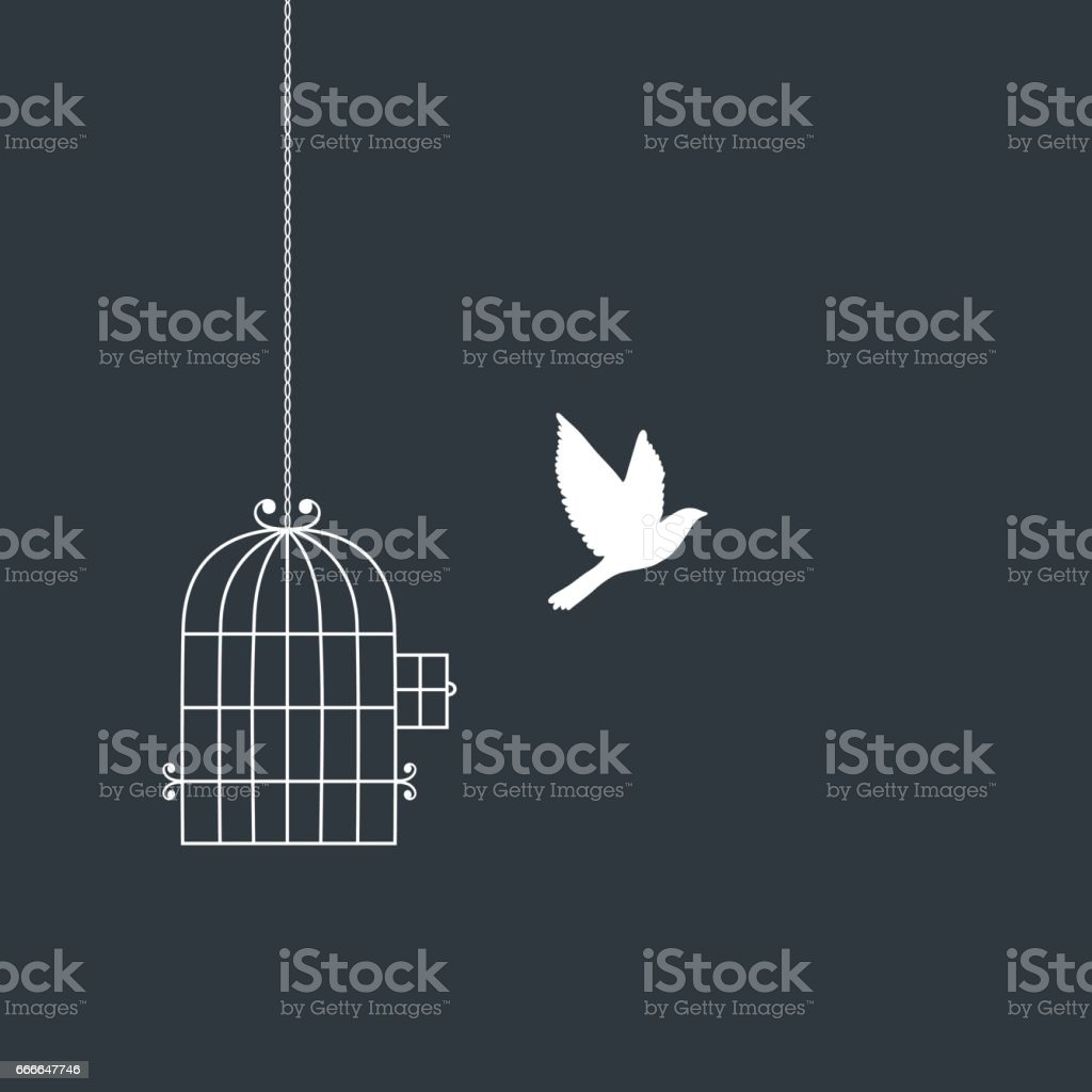 Flying bird and cage silhouettes. vector art illustration