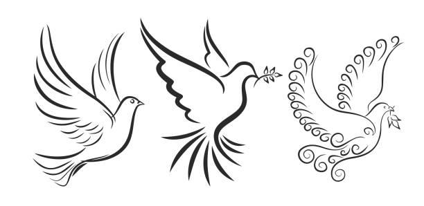 fliegender vogel. - wildtaube stock-grafiken, -clipart, -cartoons und -symbole