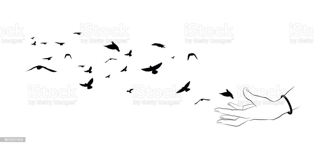 Fliegende Vögel Und Handsilhouetten Auf Weißem Hintergrund ...
