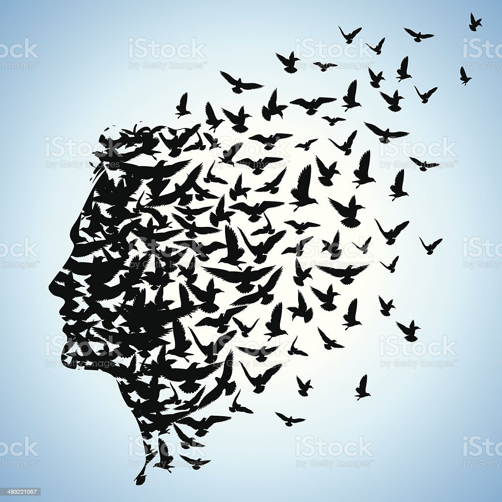 flying birds to human head vector art illustration