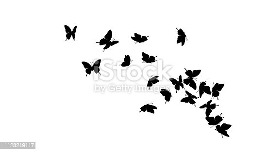 Flying butterflies silhouettes. Vector design element.