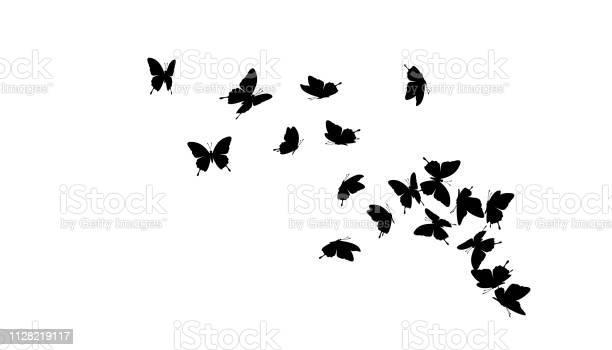 Flying butterflies vector decoration element vector id1128219117?b=1&k=6&m=1128219117&s=612x612&h=au5zgjgifloyytxwxv8iu6vfrp5wg563xaqda qwvhc=