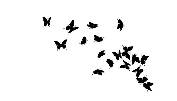 flying butterflies. vector decoration element. - butterfly stock illustrations