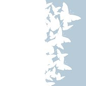 istock Flying butterfly vector card. 1253355464