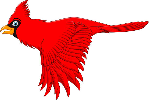 flying cardinal bird - cardinal mascot stock illustrations, clip art, cartoons, & icons