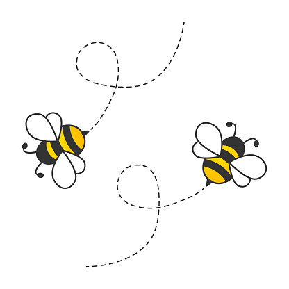 Flying cute bees with dotted route. Vector cartoon insect illustration. Isolated on white