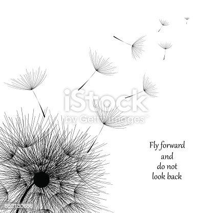 Flying Dandelion black. Abstract dandelion background