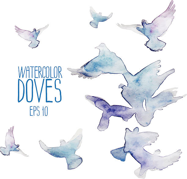 flying doves - wildtaube stock-grafiken, -clipart, -cartoons und -symbole