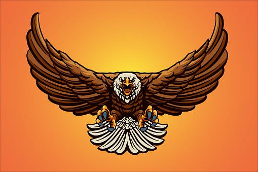 Flying Eagle Mascot Vector Illustrations