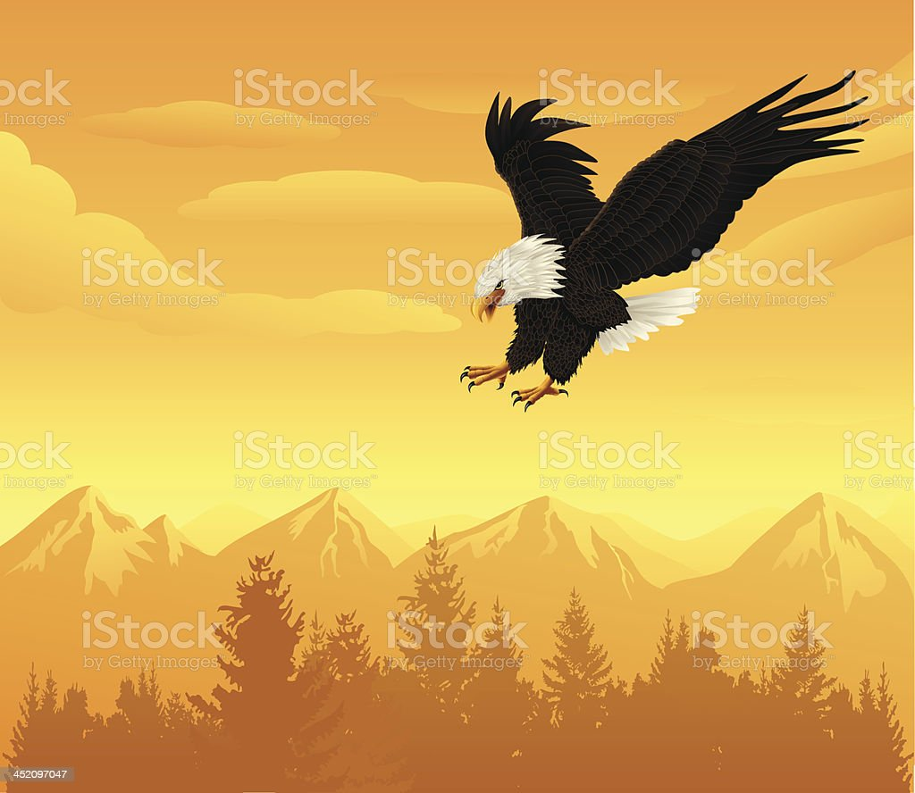 Flying Eagle royalty-free flying eagle stock vector art & more images of animal