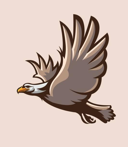 Best Bald Eagle Flying Illustrations, Royalty-Free Vector ...