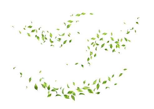 Flying green leaves