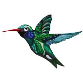 Flying green-blue bird Hummingbird. Colibri