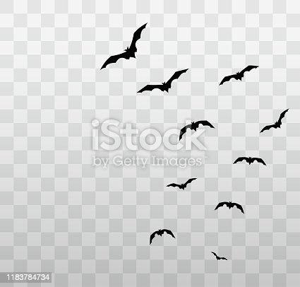 Flying Halloween bats on transparent background. Vector illustration. EPS10
