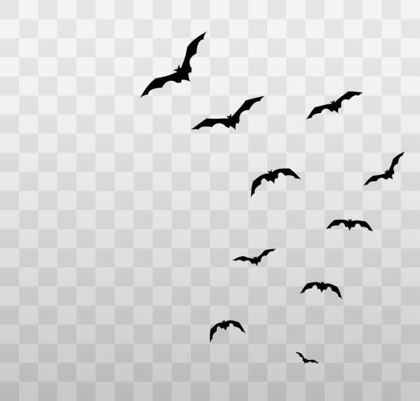Flying Halloween bats on transparent background. Vector Flying Halloween bats on transparent background. Vector illustration. EPS10 bat stock illustrations