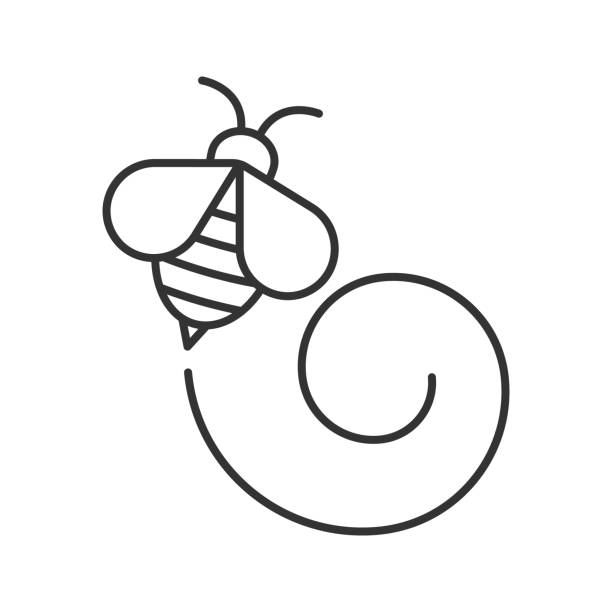 Flying honey bee icon vector art illustration