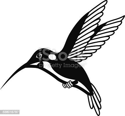flying hummingbird in black and white