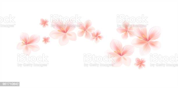 Flying light pink peach flowers isolated on white background flowers vector id951710842?b=1&k=6&m=951710842&s=612x612&h=a9t3p68ncs fmwo46k7jnlqwbgyhefmymie742zhsik=