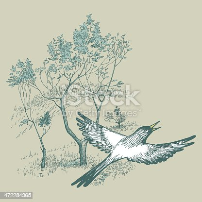 Flying magpies.Vector illustration.Bird flying against the tree.