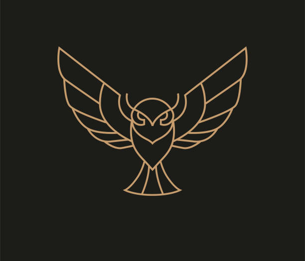 flying owl logo - sowa stock illustrations
