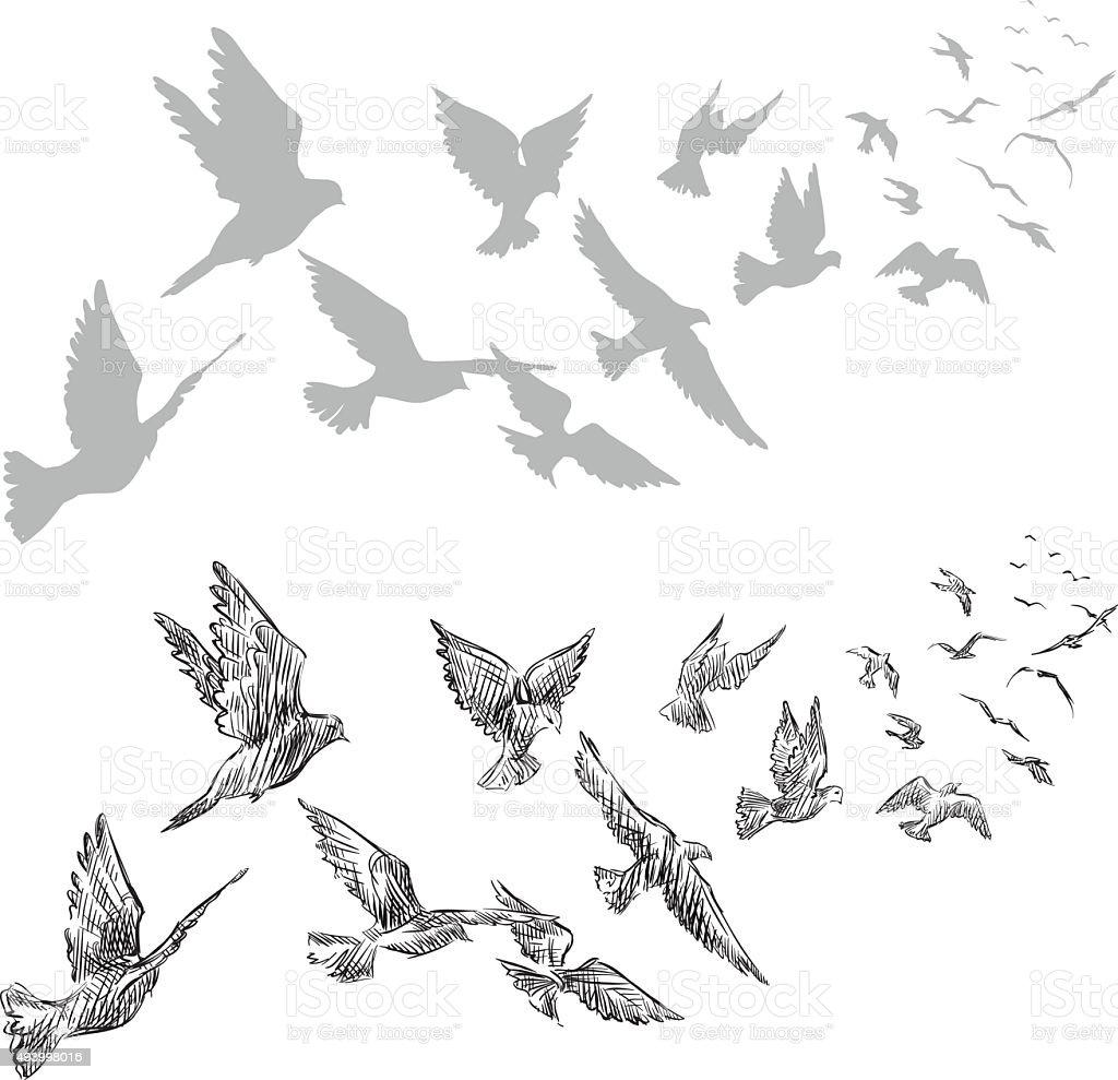 flying pigeons, hand drawn, Векторная иллюстрация векторная иллюстрация