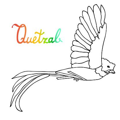 Ucan Quetzal Kusu Respleded Kanatli Elle Cizilmis Sanatsal Kroki