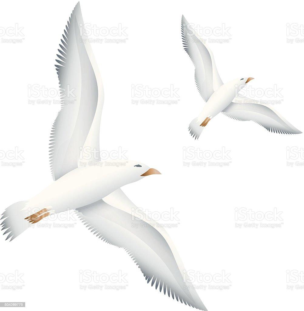 Flying seagulls birds royalty-free stock vector art
