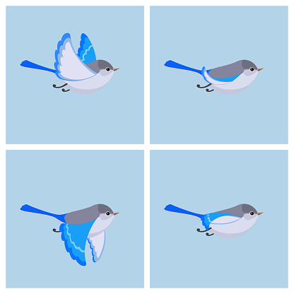 Flying Splendid Fairy Wren Animation Sprite Sheet — стоковая векторная графика и другие изображения на тему Австралия - Австралазия