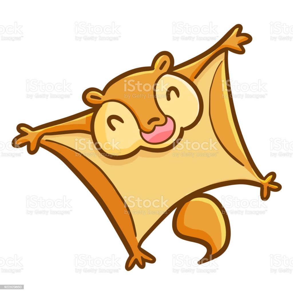 Flying Squirrel Smiling Stock Vector Art More Images Of Animal