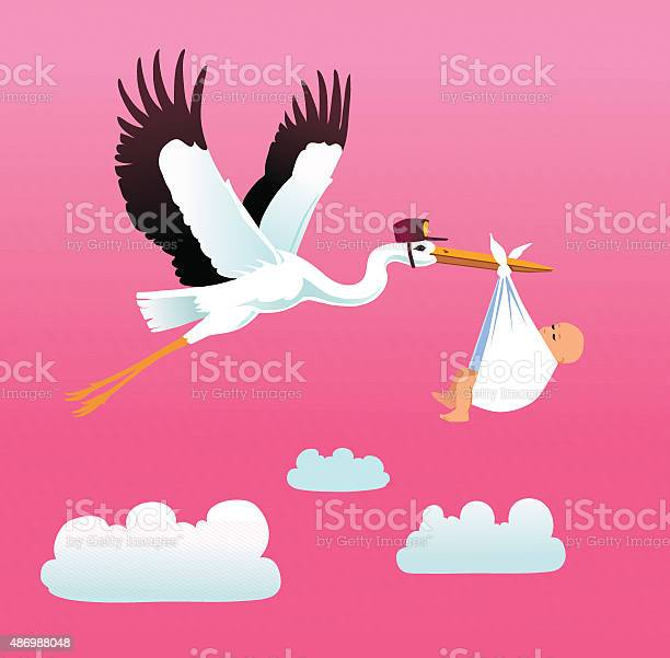 Flying stork delivering baby girl vector id486988048?b=1&k=6&m=486988048&s=612x612&h=twbxwvpdd0r1003tvtn9hr2x7bfz3h398yi8gzfvkmc=
