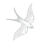 Flying swallow or swift tattoo design.